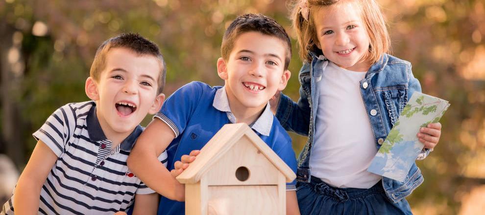 Construye tu caja nido